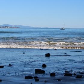 Goleta Beach. Credit: Katharine McLean